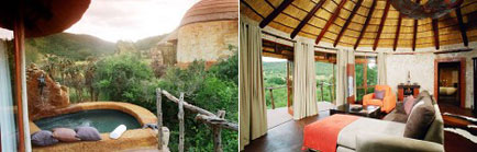 Nguni River Lodge in Addo Elephant Park