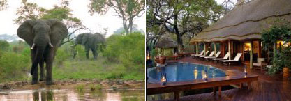 Imbali Safari Lodge in the Kruger National Park