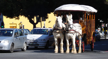 Horse Drawn Carriage Tour through the streets of Central Cape Town