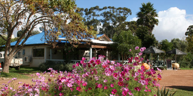 Delish – A Must Stop on the N2 to Garden Route