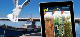 The go! Travel South Africa app
